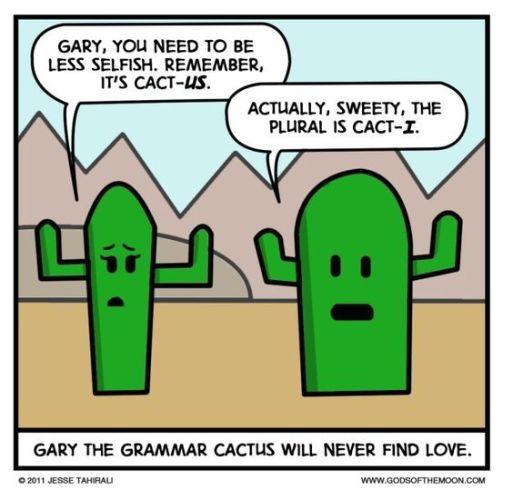 Grammar, cactus, love, weird al, word crimes, dylanna fisher, switching styles